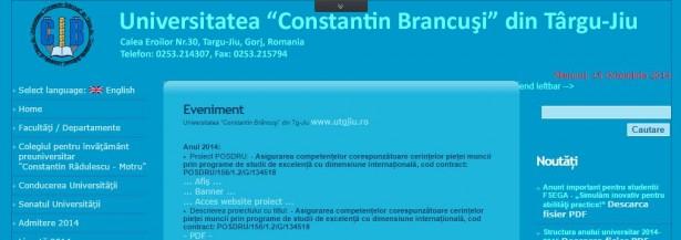 Constanti-Brancusi